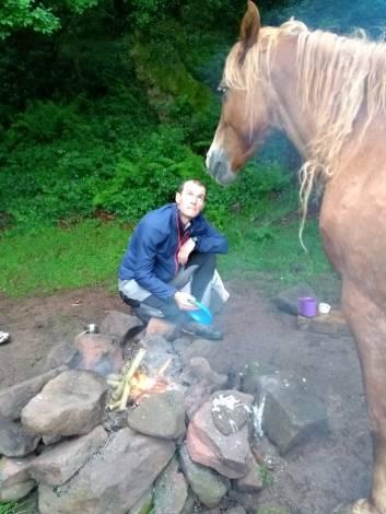 Stubborn horse in the campsite