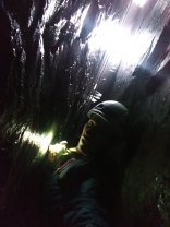 climbing up to the light